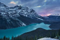 Peyto Lake Sunrise (circleyq) Tags: winter mou