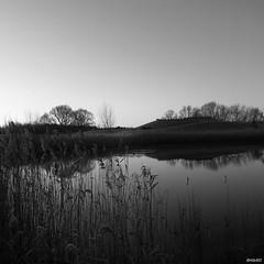 blackandwhite landscape samsung s4m samsunggalaxys4mini (Photo: jenquest on Flickr)