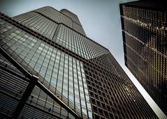 Trump Perspective (SRV PIX) Tags: blue chicago cold architecture buildings nikon perspective trumptower d7000