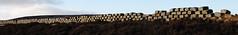 blocks 2 (ewjz31) Tags: uk moors blocks moorland countydurham northeastofengland waskerleyway sculpturetrouve
