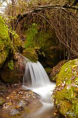 Peine natural / Natural Comb (MaikelCan) Tags: ro river agua nikon andalucia cdiz sendero rocas d90 benamahoma romajaceite