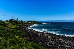 Nikon D7100 TEX_4382 (Texwantsmore) Tags: hawaii nikon kauai kauaibeach d7100