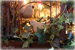 Birds and Mini-Lights in Cage (dining delight) Tags: bunny birdcage fireplace ivy lantern candlesticks minilights heisrisen boxwoodwreath blackroundmirror |springmantel