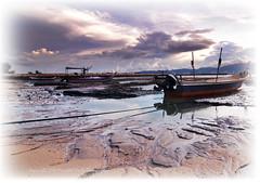 Teluk Air Tawar, Butterworth (Micartttt) Tags: sea boat malaysia penang butterworth micarttttworldphotography micartttt telukairtawar