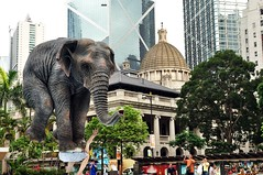 Look Ma! No Hands!! (Mark Obusan) Tags: hk elephant building statue court garden square circus hong kong balance balancing supreme bankofchina legco governmentoffices oldsupremecourt legislativecouncil cheungkongcenter chater pentateuque oldbankofchina fabienmerelle