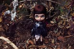 Cleo ~ Blythe Custom