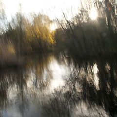 Wat er blinkt (Mariette van Waard) Tags: trees motion blur nature movement woerden