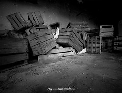 (Daniele Peruzzi) Tags: white black dark blackwhite decay details getty dettagli destroyed decayed decadence gettyimages desolated peruzzi