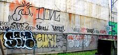 Graffiti In Lower Manhattan. Dong. Curve.  Inkhead. Sem. Starv. (Allan Ludwig) Tags: graffiti sem curve lowermanhattan dong inkhead starv