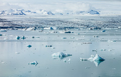 Icebergs (Meredith Lewis) Tags: mountain lake mountains ice water is iceland europe lagoon calm glacier iceberg icebergs jkulsrln vatnajkull breiamerkurjkull