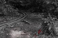 20130713-IMG_4751.jpg