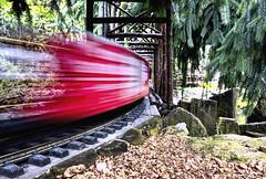 Garden Zephyr (Explored) (Wes Iversen) Tags: motion trains motionblur chicagobotanicgarden modeltrains odc hcs tokina1116mmf28 ourdailychallenge clichsaturday