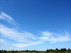 lenticularis und virga 12.08.2013 (*hannes*) Tags: timelapse wolken cumulus wetter cirrocumulus cirrus altocumulus virga lenticularis zeitraffer