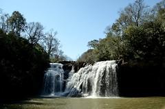 _DSC3377 (Papa Pic) Tags: musgo argentina waterfall day arboles selva clear monte arroyo misiones cascada 瀑布 sanvicente saltogolondrina