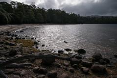 Light on the Lake (MrBlackSun) Tags: oz australia tasmania aussie tas tassie