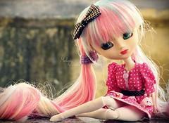 Melody [Pullip Mitzi] (Dekki) Tags: fashion asian doll melody planning 600 groove pullip limited edition mitzi jun junplanning rewigged