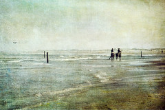 freedom (silviaON) Tags: sea horses beach october norderney ie textured 2013 soulscapes contemporaryartsociety memoriesbook bsactions magicunicornverybest magicunicornmasterpiece flypapertextures