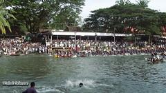 Karichal Vs Sree Karthikeyan - Snake Boats - semi final - II (Rajesh Kalapura) Tags: india boat town no kerala noel southindia kottayam kumarakom boatrace snakeboatrace vallamkali chundanvallam karapuzha veppu thazhathangadi champakkulam chundanvallom karichal jesusboatclub kumarakomtownboatclub iruttukuthi rajeshkalapura vellamkulangara sreekarthikeyan jawaharthayankari dayino1 thuruthithara 3thaikkan ajiben anilkalapura stfrancisboatclub villageboatclub clubvellamkulangarakarichalsree karthikeyanjawahar thayankarichampakkulamdayi 1thuruthithara3thaikkanaji bennoelanil kalapuravallam kalichundan vallamsouth
