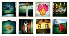 pophouse project (Lisa Brawn) Tags: street canada calgary art public painting pigeon retro popart alberta signage publicart flyingsquirrel pinkpoodle payitforward mariacallas mrsslocombe lisabrawn psychicchihuahua streetlevelartwork