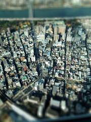 Tilt shift Tokyo from Sky Tree (Thomo13) Tags: city japan tokyo miniature shift tilt