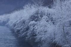 la galaverna (Lele 48 - Gabriele) Tags: canon inverno freddo ghiaccio galaverna 2013 5dmarkii