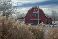 Willow barn (Rocky Pix) Tags: park county mountain barn 35mm rockies colorado pix hand longmont rocky boulder f16 held nikkor sec 1320 rockypix normalzoom 1870mmf35g willowbarn wmichelkiteley longmontswillowfarmpark