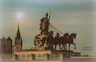 Brunonia und ihre Pferde