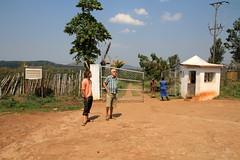Teefabrik und Teeplantage in Gurue (Mosambik)