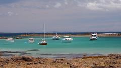 Hobbs Beach (blue polaris) Tags: new travel sea green water landscape island coast scenery gulf north olympus auckland zealand maritime omd matangi hauraki tiritiri em5