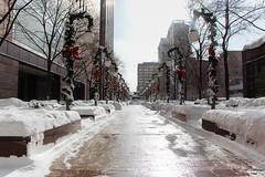 No rush to take the holiday decor down (aerojad) Tags: winter snow chicago chiberia