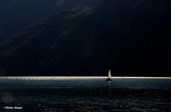 Voilier en contre-jour (4) (didier95) Tags: montagne lac voilier lacdubourget aixlesbains