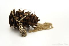Bugged (dizzyanna) Tags: bug necklace cone sunday jewellery strobist