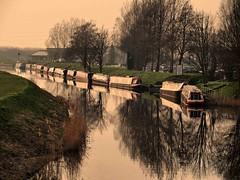 Old Nene March (saxonfenken) Tags: tree reflections river march dusk 2014 narrowboats latesun gamewinner 8124 favescontestwinner friendlychallenges storybookwinner pregamewinner 8124river