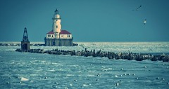 Chicago Harbor Lighthouse (Carl's Captures) Tags: winter seagulls lighthouse chicago seascape cold ice birds landscape march frozen illinois gulls horizon flight shoreline chitown lakemichigan cookcounty breakwall chicagoharborlighthouse nationalre