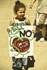 Hell No GMO (Light Brigading) Tags: sign square bees banner joe bee milwaukee gmo monsanto catalano brusky geneticallymodifiedorganism marchagainstmonsanto
