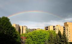 Rainbow (Pauline Brock) Tags: sky weather rainbow flickrfriday lightasafeather