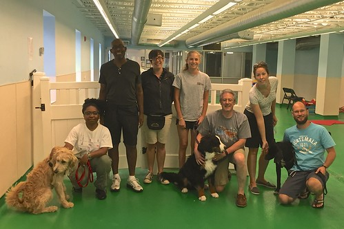 "Obedience 1, Session E, Summer 2015-Sat; Class Photo • <a style=""font-size:0.8em;"" href=""http://www.flickr.com/photos/65918608@N08/20183755589/"" target=""_blank"">View on Flickr</a>"