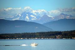Heading Back (Worthing Wanderer) Tags: washington usa sunny summer hot sea mountains islands sanjuanislands orcasisland anacortes eastsound