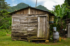 Simple shack in a beautiful Jamaican environment.