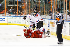 """Missouri Mavericks vs. Allen Americans, March 3, 2017, Silverstein Eye Centers Arena, Independence, Missouri.  Photo: John Howe / Howe Creative Photography • <a style=""""font-size:0.8em;"""" href=""""http://www.flickr.com/photos/134016632@N02/33117917332/"""" target=""""_blank"""">View on Flickr</a>"""
