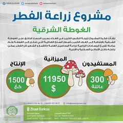 انفوغراف مشروع الفطر (emaar_alsham) Tags: اعمار الشام السام سوريا الغوطة مشروعالفطر emaar emaaralsham syria syrian project