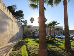 Palms near Bab Moulay Ismail, Meknes, Morocco (Paul McClure DC) Tags: meknes morocco almaghrib jan2017 meknès historic architecture scenery