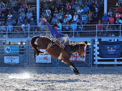 P3110183 (David W. Burrows) Tags: cowboys cowgirls horses cattle bullriding saddlebronc cowboy boots ranch florida ranching children girls boys hats clown bullfighters bullfighting