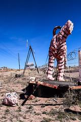 Pink Tiger Lost Face. Stewart's Rock Shop. Route 66. Holbrook. Arizona (PickledMonkeyStudio) Tags: pink pinktiger route66 statue roadside holbrook holbrookarizona arizona az stewartsrockshop