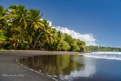 Black beach (Ellen van den Doel) Tags: summer caribbean indies sand caravelle maart gwada french water plage oceaan outdoor strand fwi blue guadeloupe paradise paradijs palm 2017 ocean tree travel beach zand antillen black west coconut cariben sea vakantie