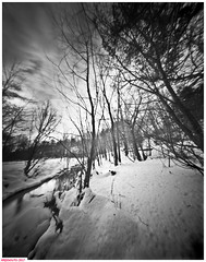 Stony creek (DelioTO) Tags: 4x5 adoxchs100 blackwhite d23 desaturated february landscape natparks ontario pinhole rural trails winter woods