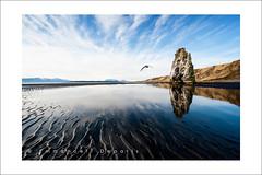 Arche  Hvitserkur (Emmanuel DEPARIS) Tags: sea beach landscape island iceland arch north emmanuel deparis