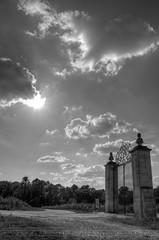 Here, is the Gate (Thomas Klm / RAWvergnat) Tags: bw nikon bordeaux nb nikkor vignes chteau landescape paysages hdr 18105 aquitaine gironde lognan pessaclognan d7000 hautlafitte