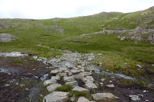 Stepping stones over the mud