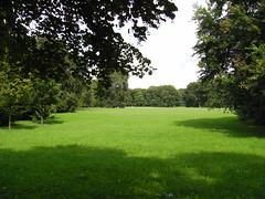 Ein Spaziergang im Brgerpark (Joey Pupsnase) Tags: deutschland bremen deu spaziergang brgerpark findorffbrgerweide
